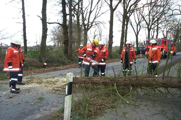 Nach dem der Baum zerkleinert und beseitigt wurde, konnte die Straße mit einem Besen gereinigt werden