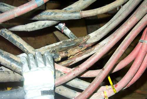 Das verschmorte Kabel hatte einen Durchmesser von mehreren Zentimetern
