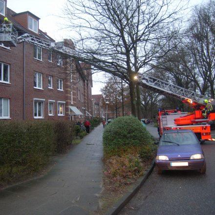 Zwischen zwei Bäumen hindurch wurde die Drehleiter in Stellung gebracht.
