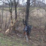 Die Beifahrertür wurde bei dem Unfall abgerissen und blieb an einem Baum hängen