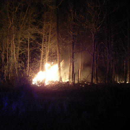 Heftiger Feuerschein im Unterholz