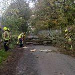Ein Baum versperrte die Straße An der Raa