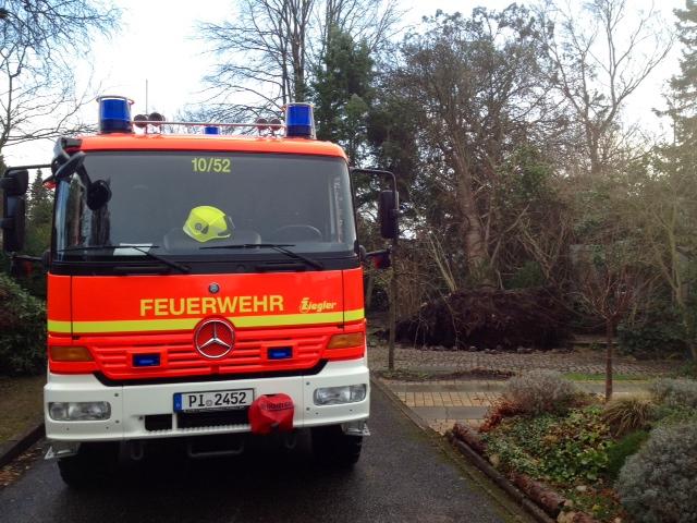 Baum auf Carport gestürzt