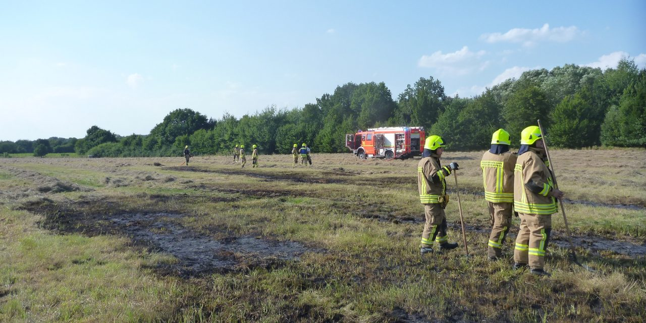 Ausgedehnte Flächenbrände