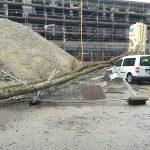 Ein auf einer Baustelle umgestürzter Baum