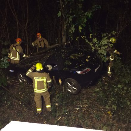 Die Bäume und Büsche sind entfernt, der Fahrer kann befreit werden.