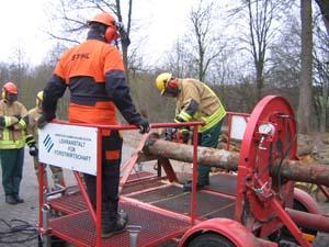 Sägen von Holz unter Spannung