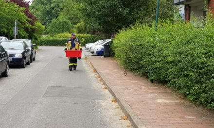 Feuerwehr stoppt Verkehr für Entenfamilie