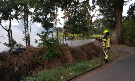 Wald- und Vegetationsbrände