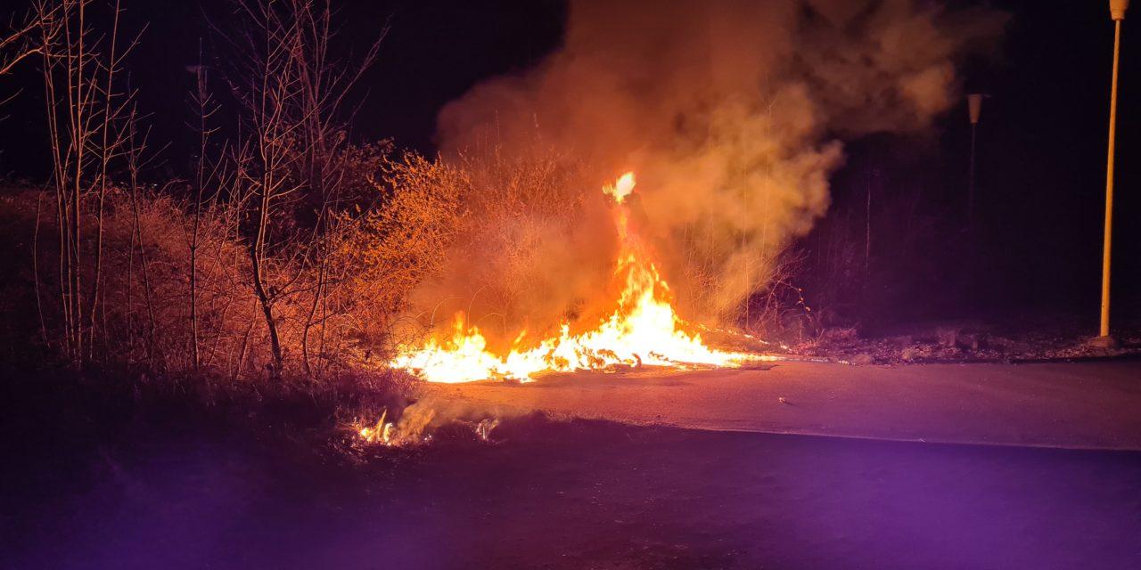 Brennen mehrere Mülltonnen