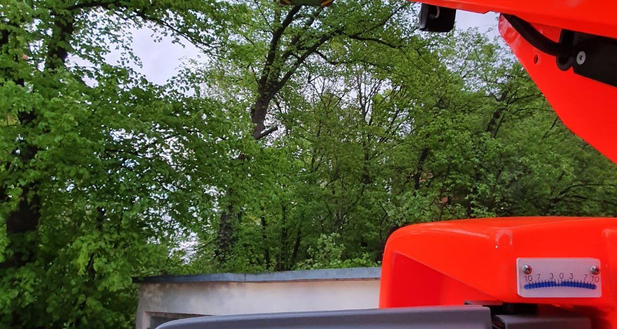 Unterstützung des THW beim Lichten einer Baumkrone